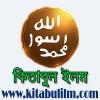 প্রখ্যাত মুসলিম ইতিহাসবিদদের লিখনিতে মিলাদুন্নবী (সা:) উদযাপন